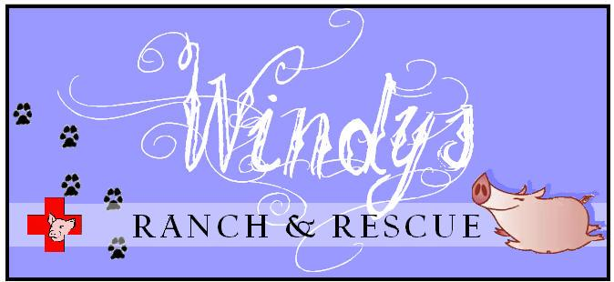 Windys Ranchandrescue LogoResize